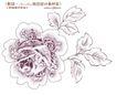水彩背景及其花纹0106,水彩背景及其花纹,人物,花样 浅色 轮廓