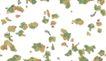 水彩背景及其花纹0117,水彩背景及其花纹,人物,乱花   背景  水彩花纹