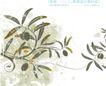 精品花纹图藤0210,精品花纹图藤,人物,花纹 自然 优雅