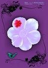 绚彩花纹背景0023,绚彩花纹背景,人物,设计 对称 特色