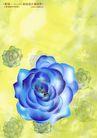 绚彩花纹背景0024,绚彩花纹背景,人物,渲染 玫瑰 寓意