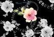 绚彩花纹背景0051,绚彩花纹背景,人物,鲜艳 黑白图层 鲜明对比