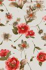 艳丽色花纹0011,艳丽色花纹,人物,艳丽色系 牡丹花