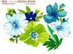 艳丽色花纹0054,艳丽色花纹,人物,白菊 名贵品种 绿叶