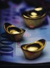 投资理财0065,投资理财,金融,金元宝