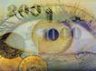 投资理财0101,投资理财,金融,瞳孔 眼球 视角