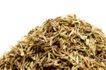 调味香料0050,调味香料,饮食水果,香叶 叶子 茶叶
