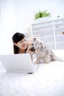 女性宠物0045,女性宠物,生活方式,笔记本 跟狗玩耍 卧室
