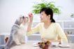 女性宠物0050,女性宠物,生活方式,喂养 餐桌 狗狗