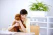 女性宠物0060,女性宠物,生活方式,布偶 桌子 盆栽
