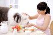 女性宠物0075,女性宠物,生活方式,喂狗 安抚 摸头