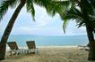 渡假地点0011,渡假地点,生活方式,海边 椰树 底下