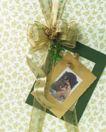 礼物新主题0053,礼物新主题,生活方式,卡片 相片 颜色