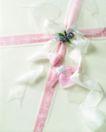 礼物新主题0055,礼物新主题,生活方式,白丝带 小饰品 十字形