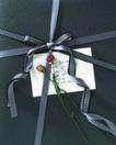 礼物新主题0073,礼物新主题,生活方式,玫瑰 花枝 文字