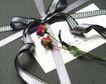 礼物新主题0075,礼物新主题,生活方式,求爱 表白 纸片
