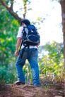大自然环保0037,大自然环保,植物,