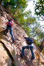 大自然环保0055,大自然环保,植物,攀登 征服 野外