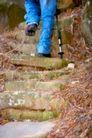 大自然环保0059,大自然环保,植物,石板 梯子 拐杖