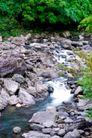 大自然环保0064,大自然环保,植物,石头 小溪 自然