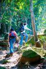 大自然环保0066,大自然环保,植物,爬山 旅游 崎岖