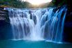 大自然环保0070,大自然环保,植物,