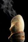 香烟迷绕0141,香烟迷绕,静物,烟雾
