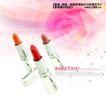 幻彩0013,幻彩,实用分层素材,化妆品世界 娇嫩玫瑰 口红 各色口红