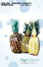 水果0006,水果,实用分层素材,菠萝 切成 两半