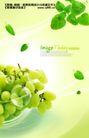 水果0013,水果,实用分层素材,葡萄 鲜嫩欲滴 绿叶落下