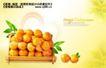 水果0020,水果,实用分层素材,橘子 新鲜橘子
