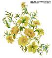 瓷器花纹0023,瓷器花纹,实用分层素材,紫荆花 花瓣 花名
