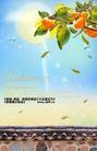 秋天0007,秋天,实用分层素材,墙头 果枝 阳光