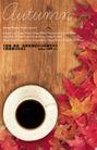 秋天0015,秋天,实用分层素材,金色季节 枫叶装饰 咖啡杯 一杯咖啡 黑咖啡