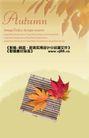 秋天0016,秋天,实用分层素材,红枫叶