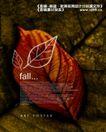 艺术海报0110,艺术海报,实用分层素材,枯黄 落叶 深秋
