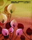 艺术海报0155,艺术海报,实用分层素材,花朵 红色 粉色