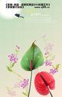 鲜花0019,鲜花,实用分层素材,独特叶子