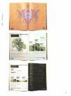 2007欧洲最佳创意奖0642,2007欧洲最佳创意奖,2008全球广告年鉴,
