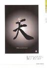 中国广告作品年鉴0473,中国广告作品年鉴,2008全球广告年鉴,