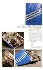 特技装帧设计0207,特技装帧设计,2008全球广告年鉴,