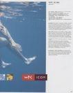 荷兰设计年鉴0371,荷兰设计年鉴,2008全球广告年鉴,