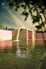 地产专家专辑20120,地产专家专辑2,地产专家,水池 树干 天空