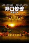 电影0010,电影,设计风云,太阳 影片 狮子