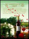 酒0112,酒,设计风云,玫瑰 树林 小屋