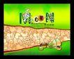 中秋月饼0145,中秋月饼,设计前沿封面包装,果仁 礼品 真语