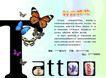 日常生活0001,日常生活,设计前沿封面包装,蝴蝶 昆虫 生物