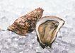 上盘海鲜0162,上盘海鲜,饮食水果,
