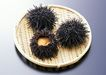 上盘海鲜0171,上盘海鲜,饮食水果,刺猬 尖角 黑色