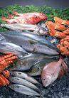 上盘海鲜0181,上盘海鲜,饮食水果,鲜鱼 银鱼